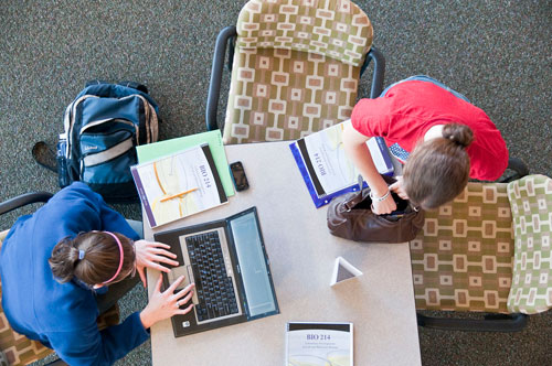People at work at a library table